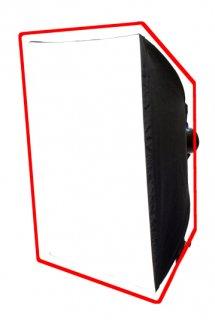 レクタドーム80*100グリッドなしスピードリング付き (22950)