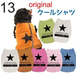 オリジナル★クールシャツ13号