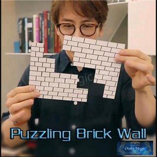 パズリングブリックウォール〜Puzzling Brick Wall〜裏返すとあるはずがない穴が!?マジックの間のアイスブレイクにおすすめ