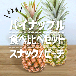 <img class='new_mark_img1' src='https://img.shop-pro.jp/img/new/icons61.gif' style='border:none;display:inline;margin:0px;padding:0px;width:auto;' />【4月下旬以降出荷予定】ミックスセット(スナック&ピーチ) 6kg(6玉)