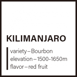 【送料込】キリマンジャロ 150g