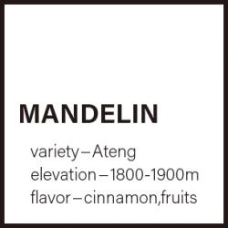 【送料込】マンデリン 150g