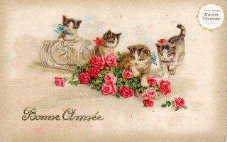 フランスアンティーク ポストカード Bonne Annee 子猫と薔薇【普通郵便送料無料】