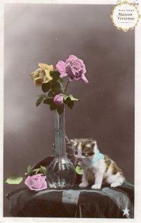 フランスアンティーク ポストカード 子猫と薔薇(写真)【普通郵便送料無料】