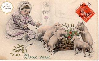 フランスアンティーク ポストカード ヤドリギとヒイラギに群がるブタさんたち【普通郵便送料無料】