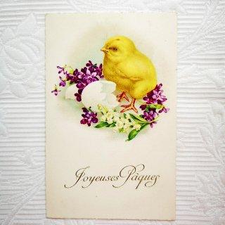 アンティーク・ポストカード ≪イースター≫すみれとひよこのカード【普通郵便送料無料】
