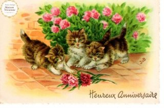 【未使用】フランスアンティーク ポストカード カーネーションに興味津々な子猫たち【普通郵便送料無料】