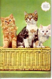 【音の出るカード】フランスアンティーク ポストカード ふわふわな子猫ちゃんたち 【普通郵便送料無料】