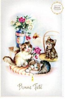 【未使用】フランスアンティーク ポストカード 薔薇と戯れる子猫ちゃんたち【普通郵便送料無料】