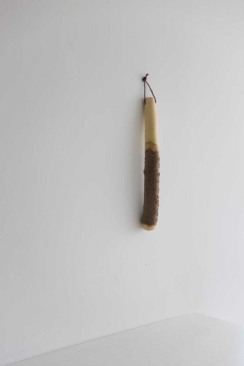 擂り粉木|山椒