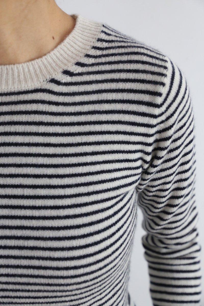 Cashmere Crew-necked border Sweater|off/navy