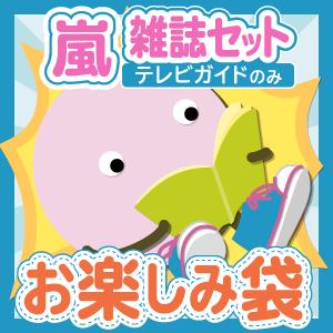 嵐 雑誌(テレビガイドのみ)10冊セットお楽しみ袋