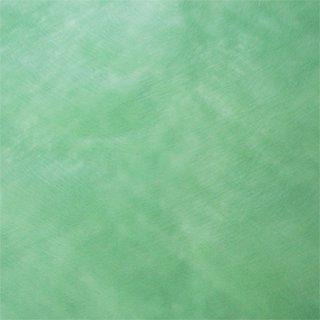 カラーペーパーグリーン