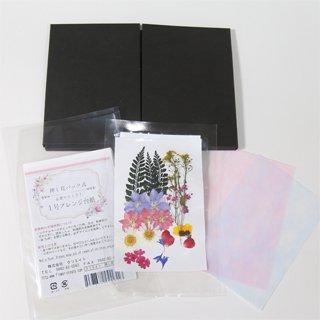 三面スタンド、体験キット花付き (黒)