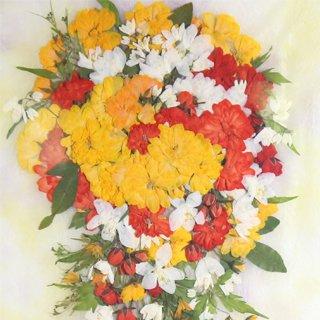 カレンダー用花セット モッコウバラ
