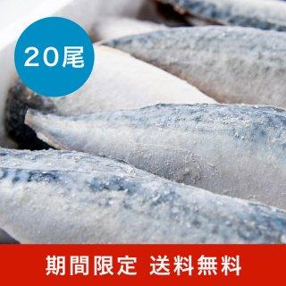 【水産物応援商品】真鯖フィレ 無塩 20尾