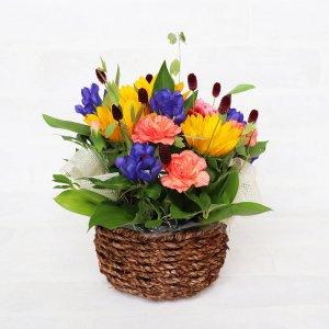 """【生花】 """"Flowers Go To"""" アレンジメント(ヒマワリ&リンドウ)"""