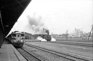 釧路駅 函館行き特急おおぞら2号 キハ82系 1972年5月