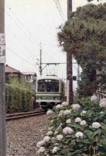 江ノ島電鉄 長谷-極楽寺 昭和56年1981