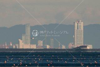 あべのハルカス 咲洲COSMO TOWER 神戸空港着陸機