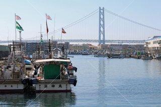 垂水漁港 マリンピア神戸 明石海峡大橋遠望