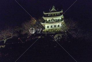 洲本城 夜景