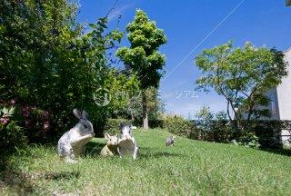 メルヘンの庭 ウサギ ハリネズミ 舞多聞