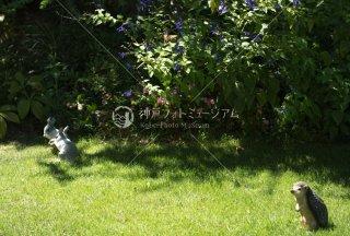 メルヘンの庭 ウサギ ハリネズミ アゲハ蝶 舞多聞