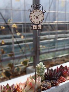 街頭時計(ベージュ)ピック