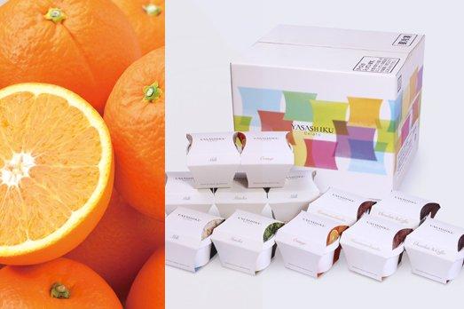 【ネーブルオレンジセット】YASASHIKUジェラート [12個入]