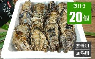 広島牡蠣 殻付き20個