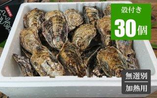 広島牡蠣 殻付き30個