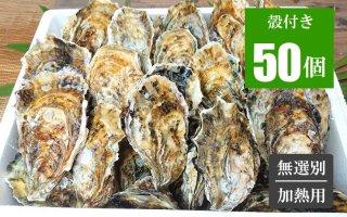 広島牡蠣 殻付き50個