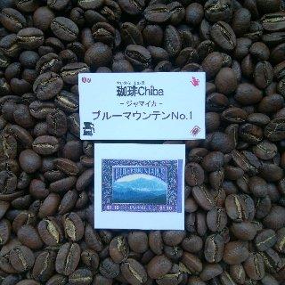 ジャマイカ ブルーマウンテン No.1 100g (中煎り)