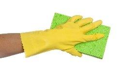 浴室清掃 (浴室+エプロン内部洗浄)