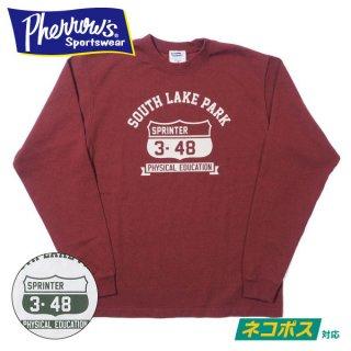 [ネコポス送料200円]フェローズ ロングスリーブ Tシャツ 長袖 SOUTH LAKE PARK 21S-PLT3 PHERROWS