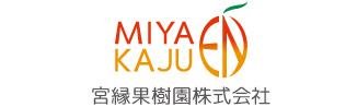 宮縁果樹園 「奇跡のマンゴー」 沖縄県 宮古島
