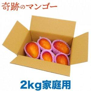 【予約商品】奇跡のマンゴー 2kg 家庭用 (良品) ワケあり(熨斗対象外商品)