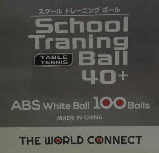 スクールトレーニングボール 100球