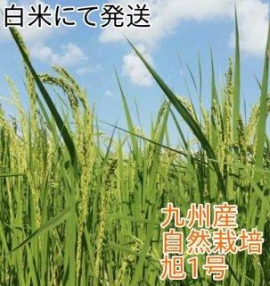 旭(あさひ)1号 1kg(九州産) 自然栽培