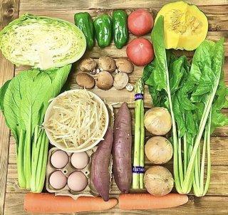 お野菜セットS ※自社配達(福岡市内・春日・大野城・那珂川町方面)