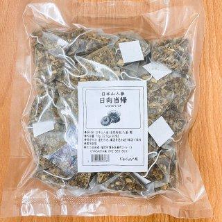 九州産 日本山人参 自然栽培 日向当帰茶 30包