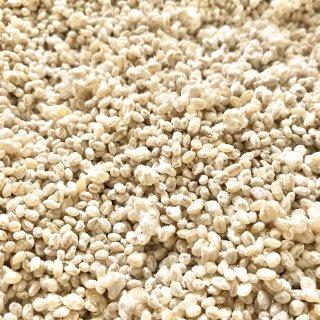 九州産 無農薬麦麹