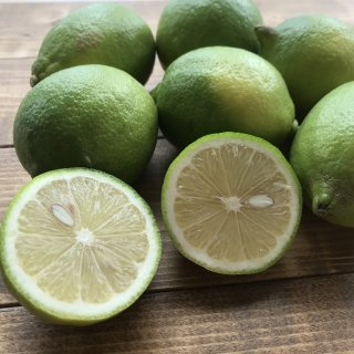 レモン 農薬化学肥料不使用 九州産(1kg)