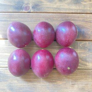 パッションフルーツ 農薬不使用