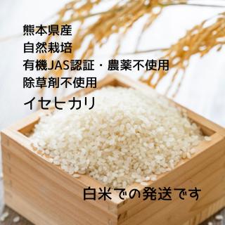 イセヒカリ 白米 1kg