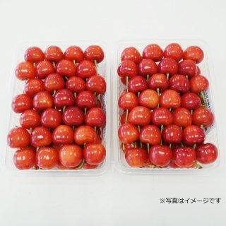 佐藤錦 手詰め(化粧箱入)500g×2