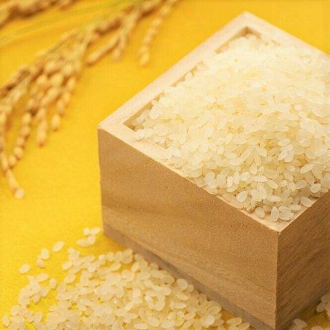 新潟県産米 魚沼産コシヒカリ 白米[ご注文を受けてから精米致します]<br>【2kg/3kg/5kg〜】