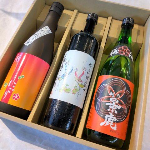 日本酒蔵のつくった特製梅酒3本セット<br>【720ml×3】