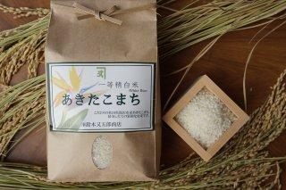 秋田県産あきたこまち 一等米 特A地区 精白米 WHITE RICE 10kg